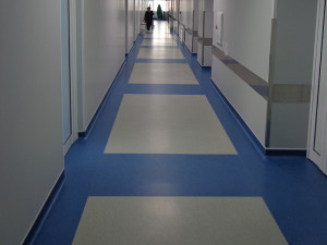Hospital Russia / LINO